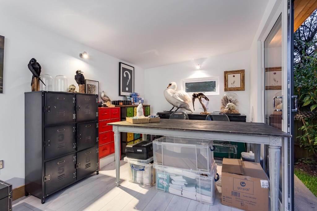 taxidermy studio for classes interior