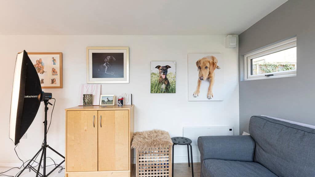 Interior of Inspiration photography studio with dog photos on the wall and a grey sofa on the left