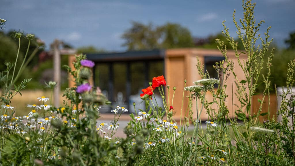 Exterior of an Inspiration used as RSPB welcome hub with flowers in the foreground