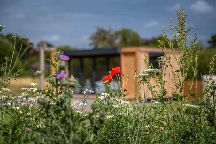An off focus garden building with tall grass and flowers in the foreground