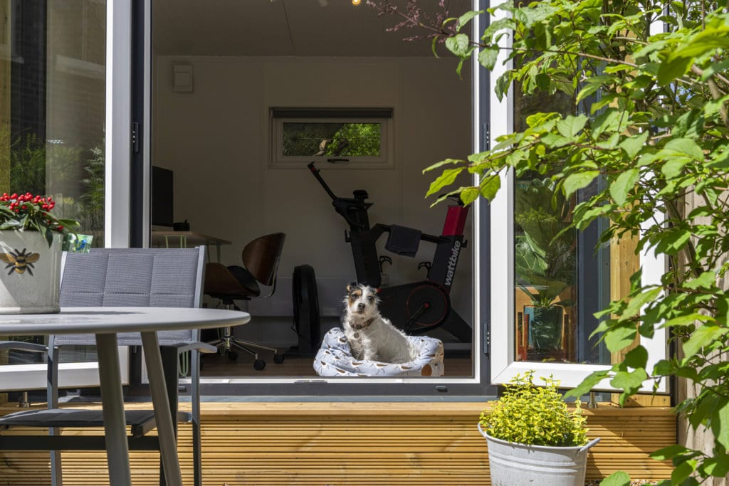 Exterior of a garden office with the doors open and a small dog inside